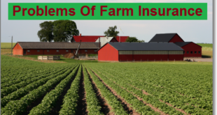 Problems Of Farm Insurance