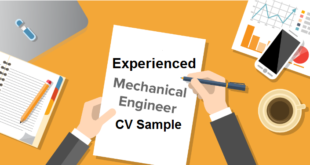 Experienced Mechanical Engineer CV Sample